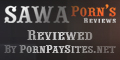 HD Porn reviews
